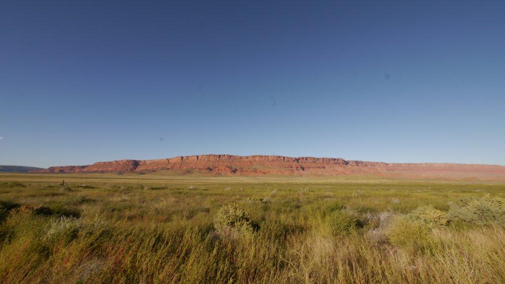 ステップというのか、こういう森林と、砂漠の中間地点のような
